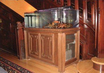 Easi Environmental Aquatic Service International Lobster